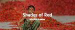 Shades of Red Photo Challenge - $100 in Prizes