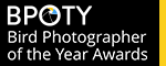 Over £15,000 in prizes! Bird Photographer of the Year Awards