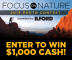 Focus On Nature 2013 Photo Contest
