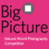 BigPicture Natural World Photo Contest