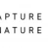 Capture the Nature – International Photography Awards