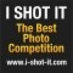 I Shot It Photo Contest