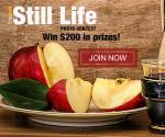 Still Life – Photo Contest
