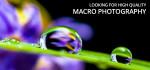 """""""Macro photography"""" contest"""