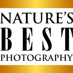 Nature's Best Photography Windland Smith Rice International Awards 2017