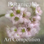 """7th Annual """"Botanical & Floral"""" Art Competition"""