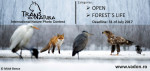 IV. TransNatura International Nature Photo Contest
