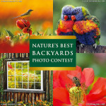 2017 Nature's Best Backyards Photo Contest