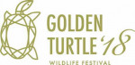 The Golden Turtle
