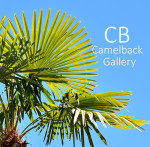 """""""VACATION VISUALS"""" On-Line Photography Competition"""