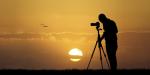 Wildbird Photo Competition 2020