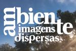 Photographic Competition Ambiente Imagens Dispersas 2019 – Ovar – Portugal