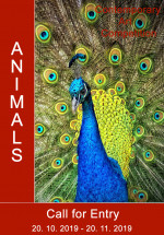 "International Art Competition ""Animals"""