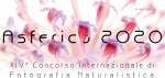 Nature Photo Competition Asferico 2020