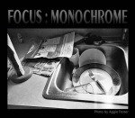 Focus: Monochrome Photo Competition