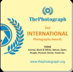 2nd International Photography Awards