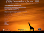 Wildlife Photo Competition 2020