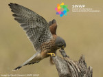 The Living World Photography Competition