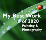 My Best Work of 2020 | Online Juried Photography and Painting Competition