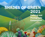 Shades of Green 2021 | Online Juried Photography and Painting Competition