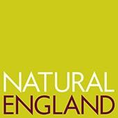 nateng_logo_rgb_72
