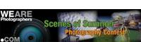 wearephotographers