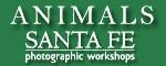 Small-Animals-logo