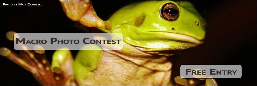Macro Photo Contest