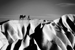 Camel and Man by Photographer: Erkan Kalenderli