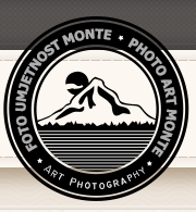 """""""MONTE ART 2015″"""