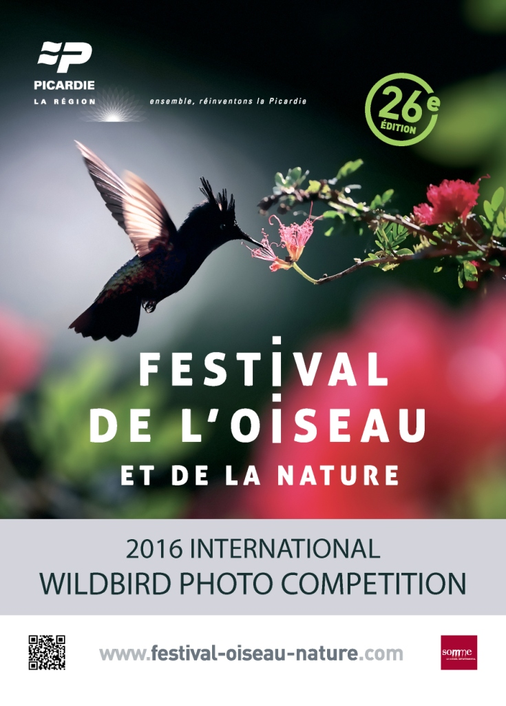 WILDBIRD PHOTO COMPETITION