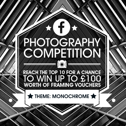 Photography Competition: Monochrome