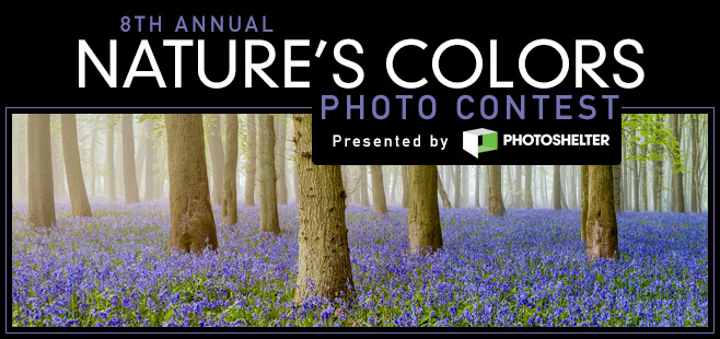 8th Annual Nature's Colors Photo Contest