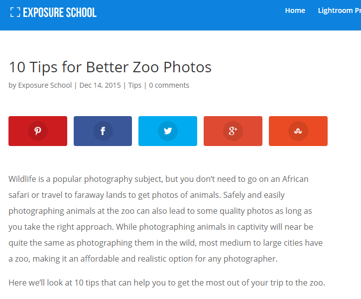 tips for zoo photography