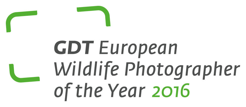 GDT European Wildlife Photographer of the Year 2016