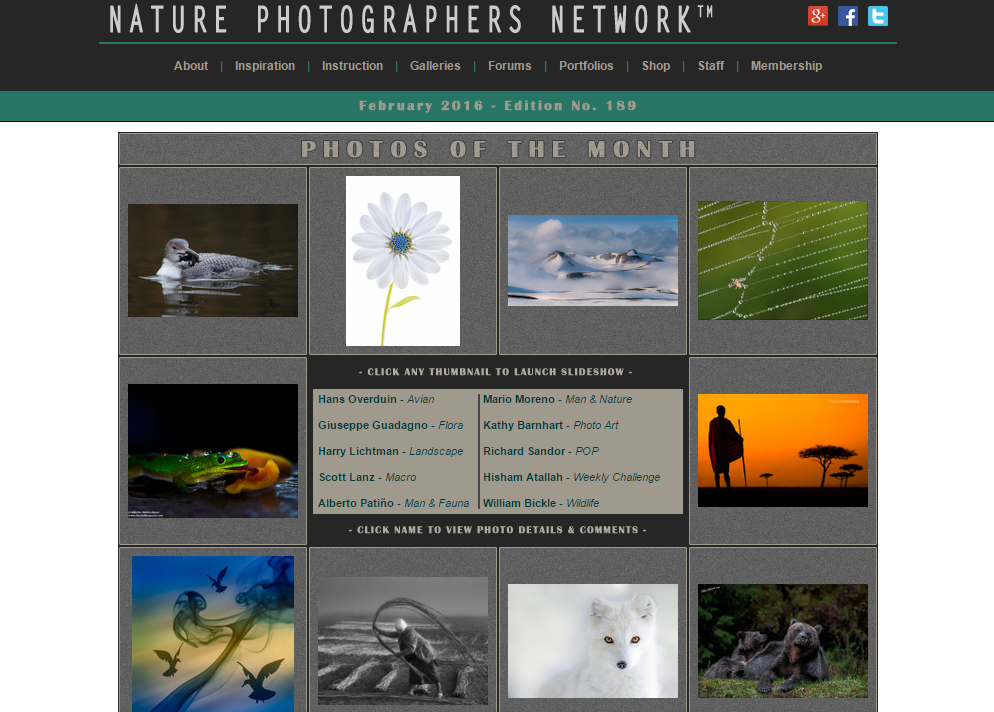 Nature Photographers Network