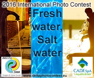 'FRESH WATER, SALT WATER' 2016
