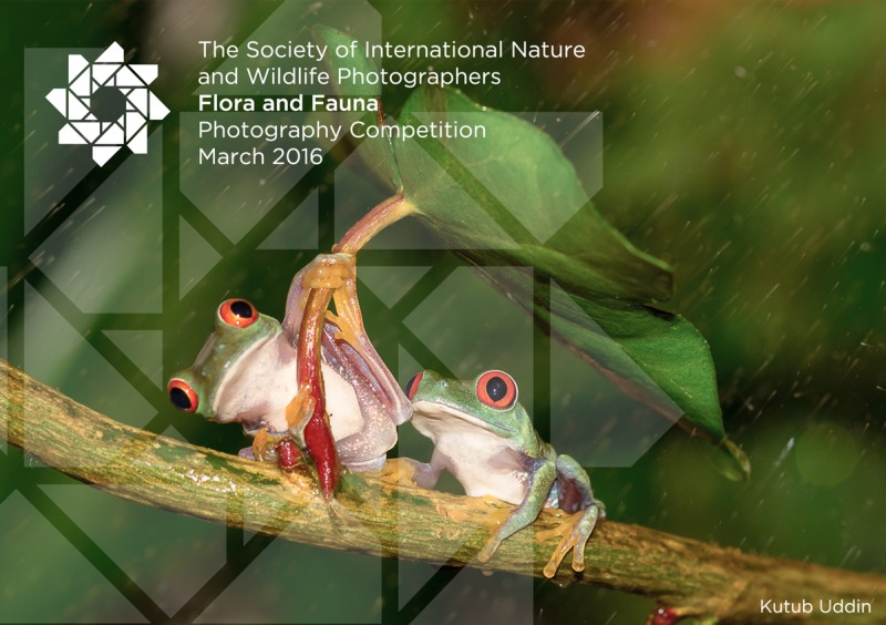 Flora and Fauna Photography Competition