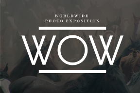Worldwide WOW Photo Contest