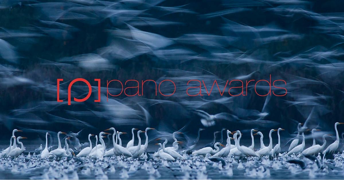 2016 Epson International Pano Awards