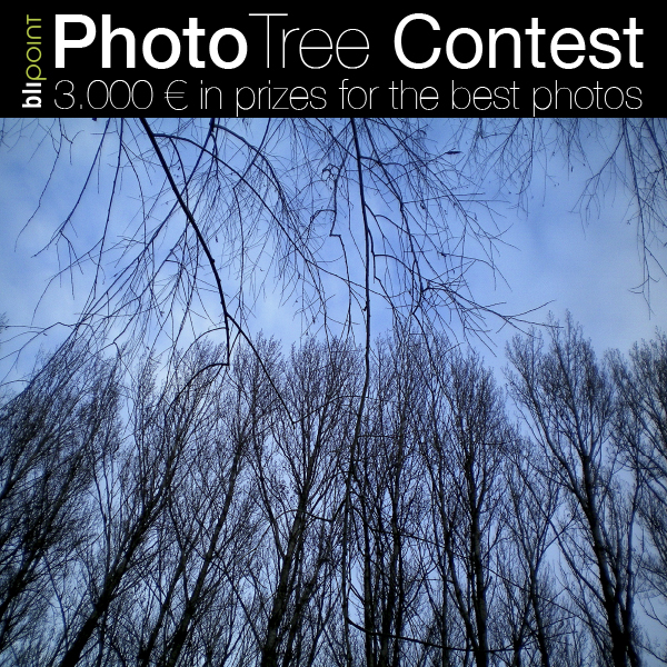 Photography Contest PhotoTree