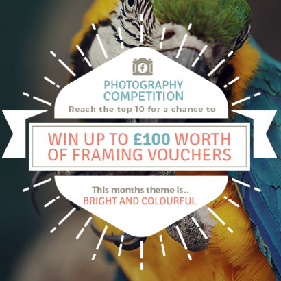 May's Bright and Colourful Photography Competition