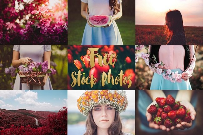 Free-Stock-Photos-Whim-Online-Magazine2