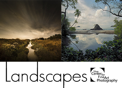Landscapes 2017 with Juror Lisa Volpe