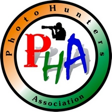 PHA International Photo Contest 2017