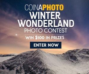 Winter Wonderland by Coina gallery