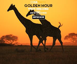 Golden Hour Contest