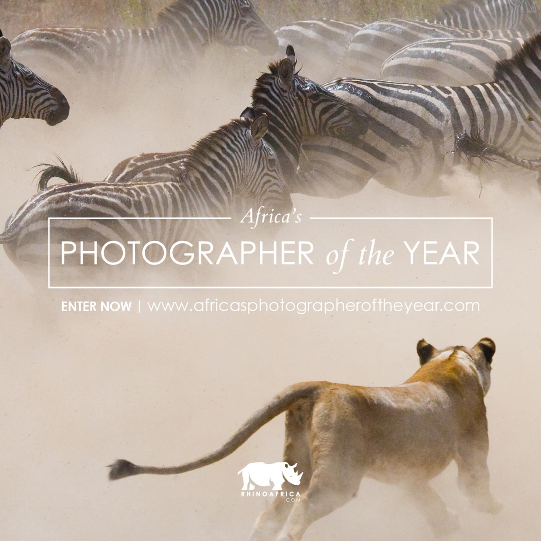 Africa's Photographer of the Year – The Big 5 category is now open!