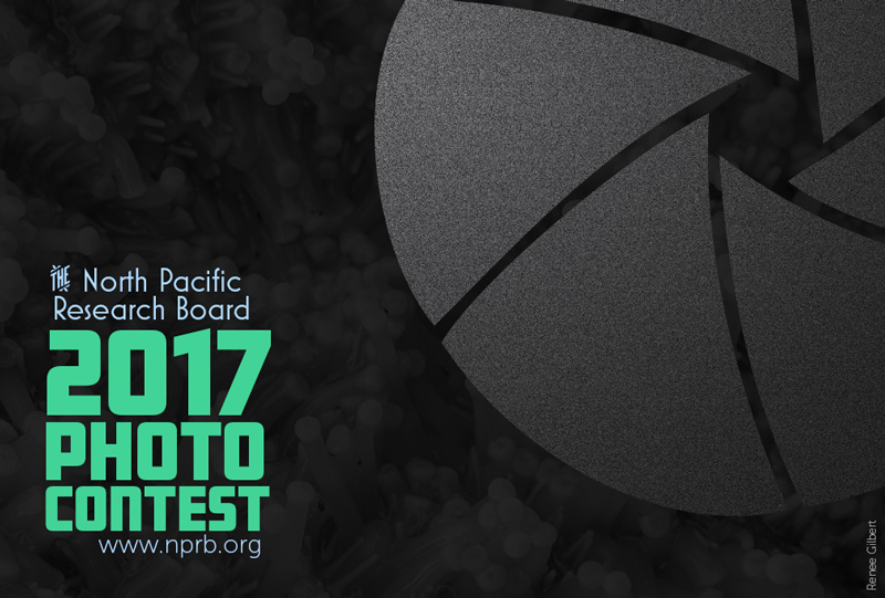 2017 North Pacific Research Board Annual Photo Contest
