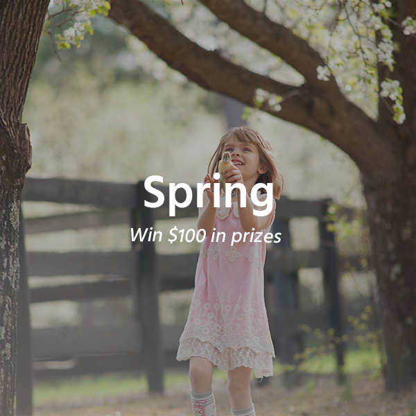Spring by Coina Gallery
